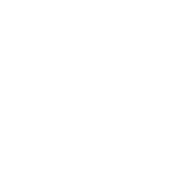 Massive Music logo